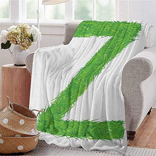 Luoiaax Letter Z Commercial Grade Printed Blanket Spring Capital Z Made Out of Grass Ladybug Butterfly Daisy Chamomile Flowers Queen King W91 x L60 Inch Green Multicolor
