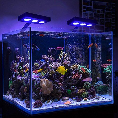 Iluminacion Acuario - Lampara Acuario LED Luz 30W con 2 Canales LED Regulables Control Táctil Cambio de Color 9x3w CREE LED para Peces de Arrecife de coral ...