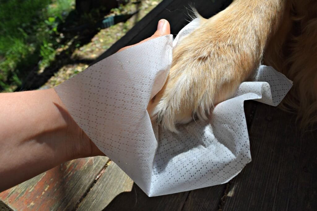 Pet in a Bag 100 Count All Purpose Wipes by Pet in a Bag (Image #3)