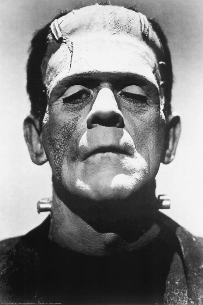 Frankenstein Movie (Boris Karloff, Close-Up) Poster Print - 24x36