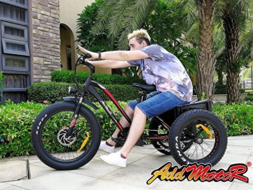 Addmotor Triciclo eléctrico 24 pulgadas Gran numático bicicleta eléctrica Triciclo bicicletas de tres ruedas 500W 10.4A Batería de litio con trasera cesta ...