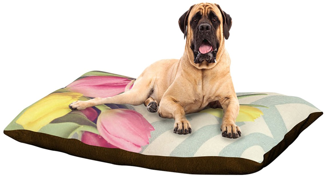 X-Large 40\ Kess InHouse Catherine McDonald Tulips and Chevrons  Dog Bed, 50 by 60-Inch