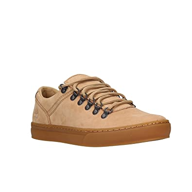 Timberland Cupsole Alpi, Chaussure pour Homme: