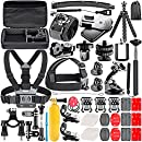 Neewer 53-In-1 Action Camera Accessory Kit for GoPro Hero Session/5 Hero 1 2 3 3+ 4 5 SJ4000 5000 6000 DBPOWER AKASO VicTsing APEMAN WiMiUS Rollei QUMOX Lightdow Campark And Sony Sports DV and More