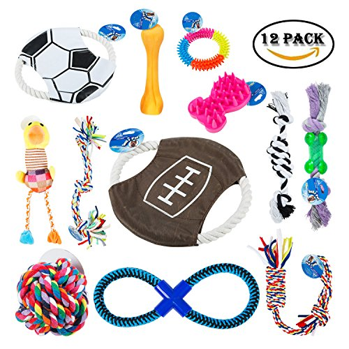 Dog Toys 12 Pack Gift Set – Interactive and Chewing Dog Toys for Medium to Small Pet Teething Toys