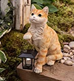 Cat with Solar Lantern - 11.75 L x 7 W x 14 H