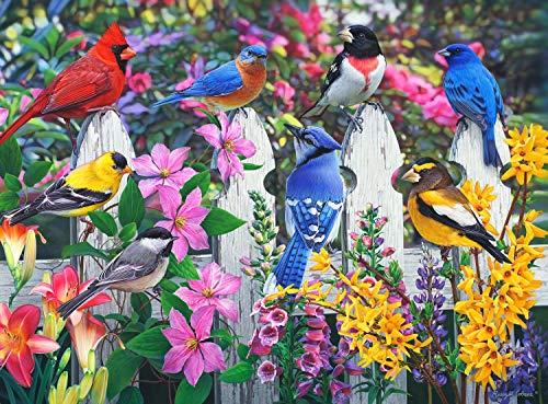 Buffalo Games - North American Songbirds - Gathering of Friends - 1000 Piece Jigsaw ()