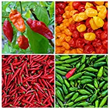 Save 25%! Some Like it HOT Garden Kit - 4 Hot Peppers - Bhut Jolokia (Ghost Pepper), Jalapeno, Habanero, Red Cayenne