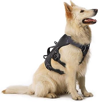 Arnes antitirones perro