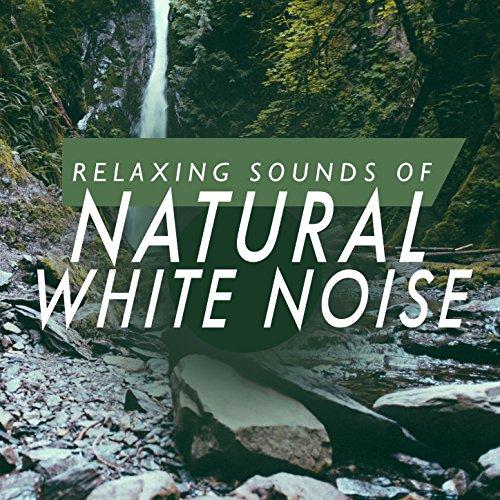 sounds of nature machine