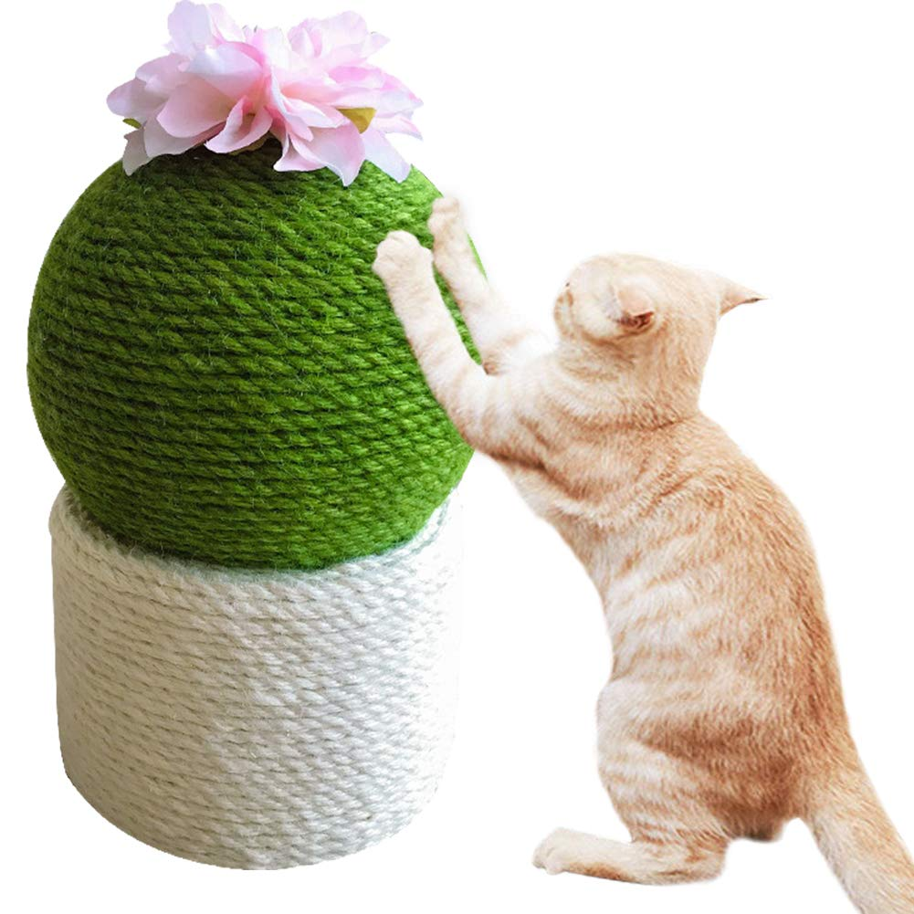 PLAFUETO Funny Cactus with Flower Cat Scratching Post Cat Interactive Toys(Round) by PLAFUETO