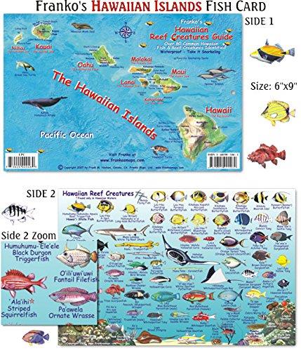 Franko maps hawaiian islands reef creatures fish id for for Hawaiian fish identification