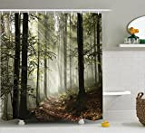 Ambesonne Farm House Decor Collection, Dark Forest Route Surrounded by Fog in the Sunshine Day Time in Mother Earth Image, Polyester Fabric Bathroom Shower Curtain Set with Hooks, Green Brown