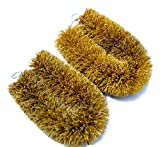 Good Natural Coconut Bristle Brush (2)-Vegetable Brush,Multi Purpose Kitchen Helper,Dishwasher Safe.