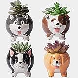 Animal Succulent Plant Pots, Buymax Mini Doggy Shape Succulent Planter Handmade Ceramic Plant Pot - Cute Dog Planter for…