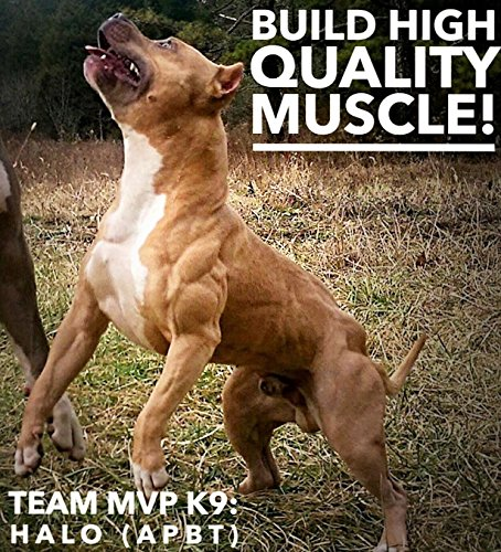 Natural Muscle Relaxants For Dogs