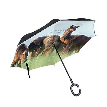 XiangHeFu - Paraguas invertido de Doble Capa, Diseño de Caballos belorussianos