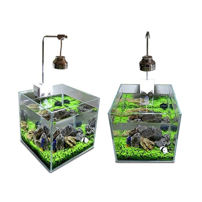 homedeco Acuario glossostigma hemianthus Callitrichoides semillas agua Hierba fácil acuático plantas vivas peces tanque decoración adorno de paisaje: ...