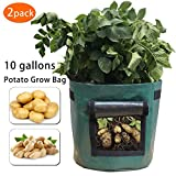 Gardzen 2 Pack Heavy Duty 10 Gallon Garden Vegetable Grow Bags With Access Flap And Handles, Suitable For Planting Potato, Taro, Beets, Carrots, Onions, Peanut