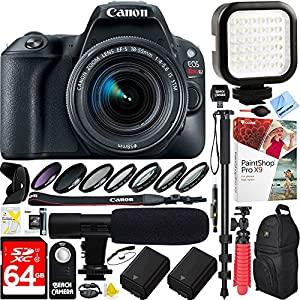 Canon EOS Rebel SL2 24MP SLR Digital Camera + EF-S 18-55mm IS STM Lens Black (2249C002) - 64GB Dual Battery & Shotgun Mic Pro Video Bundle