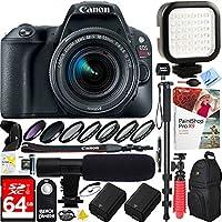 Canon EOS Rebel SL2 24MP SLR Digital Camera + EF-S 18-55mm IS STM Lens Black (2249C002) - 64GB Dual Battery & Shotgun Mic Pro Video Bundle