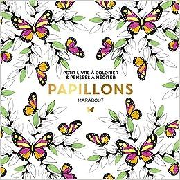 Le Petit Livre Du Coloriage Papillon Amazon Fr Collectif Livres