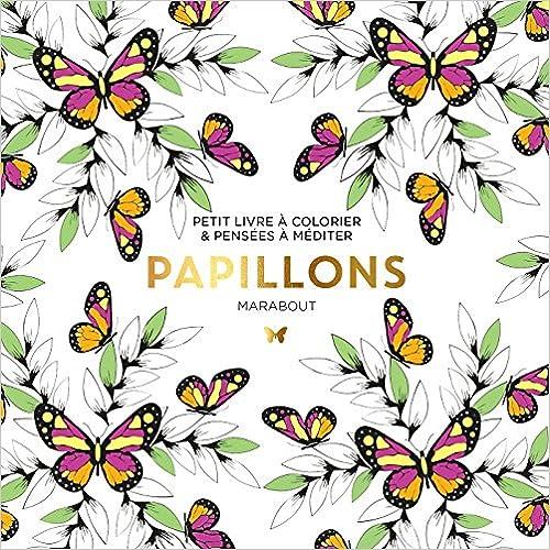 Lire un Le petit livre du coloriage : Papillon pdf
