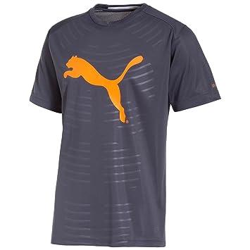 Puma IT evoPOWER Men's Graphic T-Shirt (653999 04) (Ombre Blue /