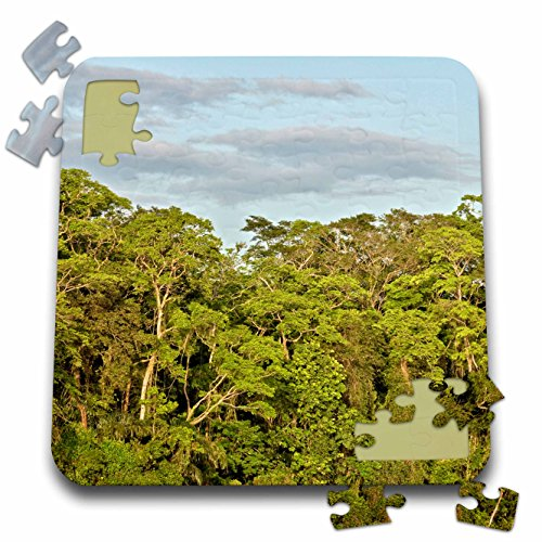 KIKE CALVO Rainforest Costa Rica Collection  - Tortuguero National Park - 10x10 Inch Puzzle (pzl_234120_2)