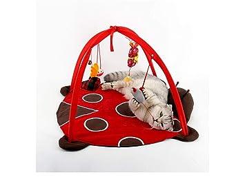 Pet Toy Home Sala de Juegos para Gatos Carpa para Gatos Sala de Juegos Smart Cat Toy Ladybug: Amazon.es: Hogar