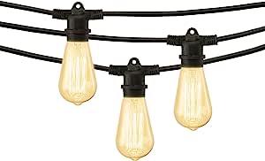 Mr. Beams String Lights, 40W ST58 Bulb