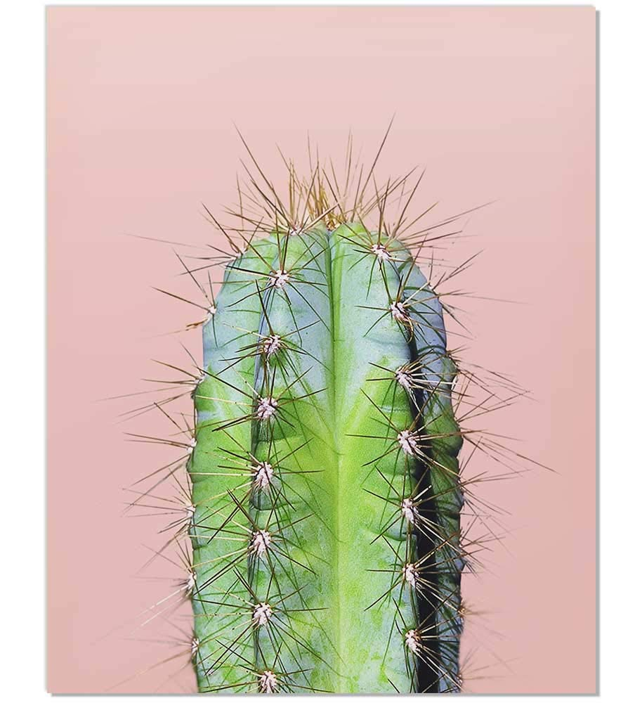 photo relating to Cactus Printable named Cactus Print, Minimalist Artwork, Minimalist Print, Cacti