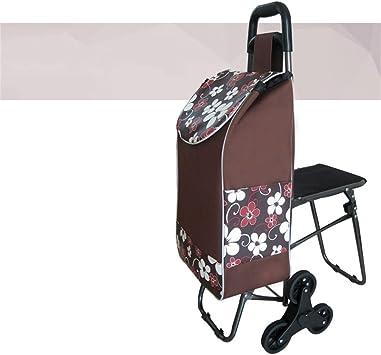 Ali Lamps@ Compras Viaje Carro de mano Personas mayores Carrito de compras Carro Escalera Escaleras Carro de compras Supermercado para comprar comida Puede llevar un vehículo con palanca de asiento: Amazon.es: Bricolaje