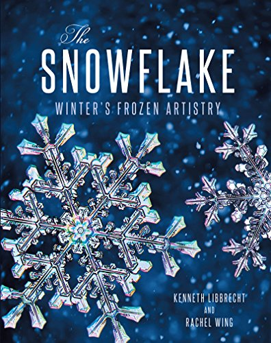 Review The Snowflake: Winter's Frozen