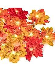 Henmi herfstslinger, herfstbladerslinger, esdoornblad, 20 lampen, perfecte decoratie voor oogstfeest, decoratie en kerstverlichting