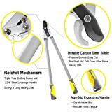 """Jardineer 30.2"""" Bypass Loppers & 15.5"""" Pruning Saw. 2"""" Cut Loppers Heavy Duty Compound Action, Long Leverage Branch Cutter Loppers with 1 Year Warranty"""