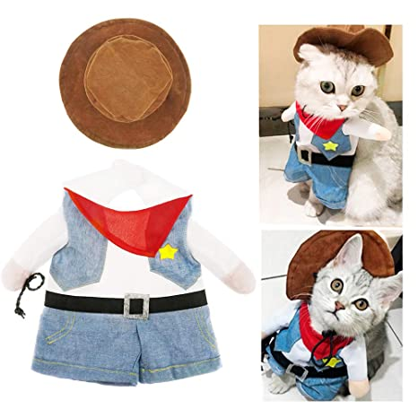 Aviling Disfraz para Mascotas de Chico, Fiesta, Divertido Traje ...