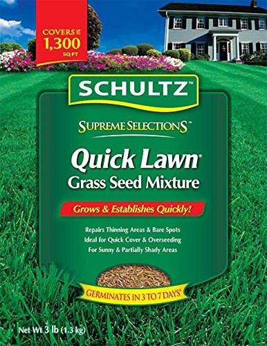 schultz-quick-lawn-grass-seed