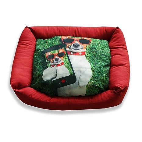 DAGOSTINO HOME - Cama cuna tridimensional para mascotas I-DOGGY - S - 30X40