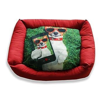 DAGOSTINO HOME - Cama cuna tridimensional para mascotas I-DOGGY - L - 50X60: Amazon.es: Productos para mascotas