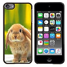 Stuss Case / Hard Protective Case Cover - Cute Bunny Rabbit - Apple iPod Touch 6 6th Touch6