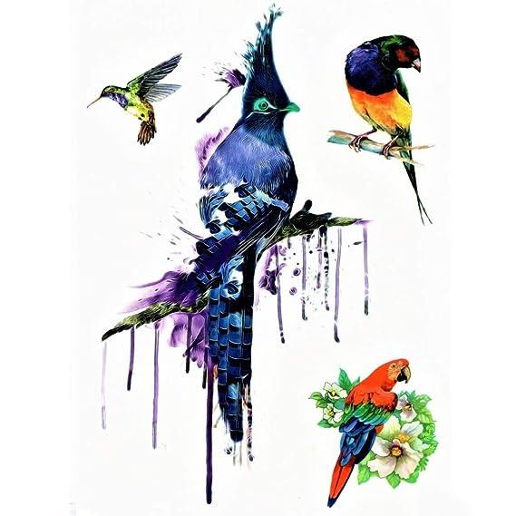 Justfox – Tatuaje temporal, colibrí, Papagayo, pájaro, multicolor ...