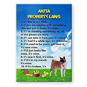 Akita Property Laws Fridge Magnet Funny 32