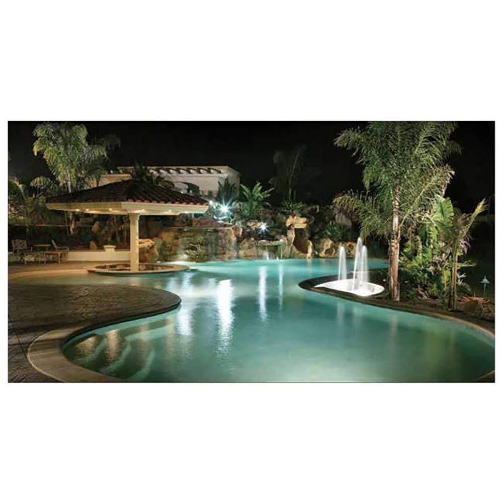 Pentair 78428100 Amerlite Underwater Incandescent Pool Light with Stainless  Steel Face Ring, 120 Volt, 50 Foot Cord, 300 Watt