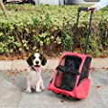 Kinbor Pet Carrier Travel Backpack for Small Animals Travel Tote Airline Wheel Luggage Bag from Guangbo