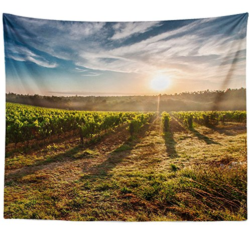 Westlake Art Wall Hanging Tapestry - Sky Agriculture - Photography Home Decor Living Room - (Antinori Santa)