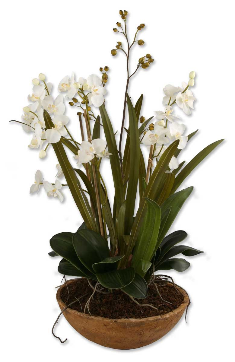 Luxe Large Faux Floral WHITE ORCHID Plant Botanical by Uttermost