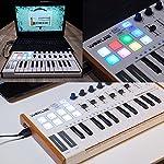 Worlde 25 Key USB Portable Tuna Mini MIDI Keyboard MIDI Controller with 8 Knobs, 8 Drum Pads, 8 Faders, Wood Imitation…