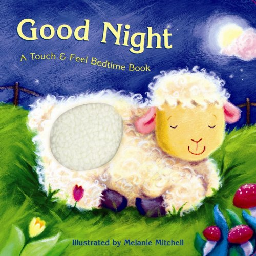 Good Night: A Touch & Feel Bedtime Book pdf epub