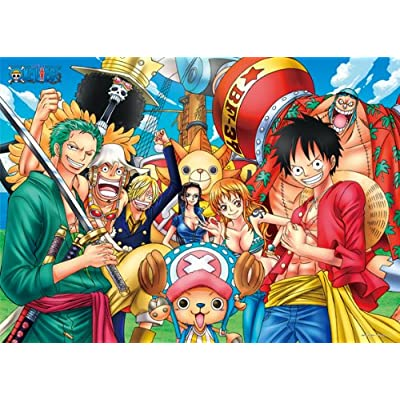 One Piece -New World- puzzle 2000 pièces